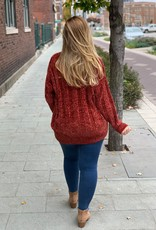 Rust Round Neck Chenille Sweater