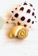 Nautilus Bead Matte Gold