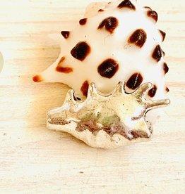 Conch Bead Silver