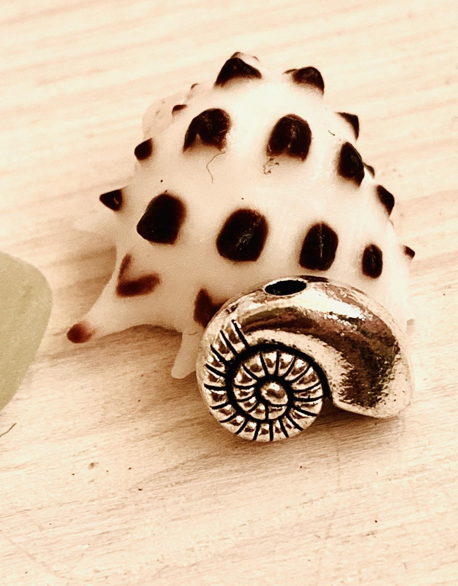 Nautilus Bead Silver