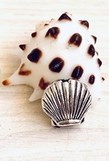 Clam Shell Bead Silver