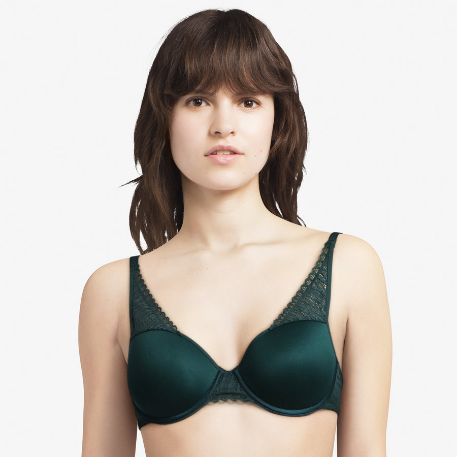 ironic t-shirt bra