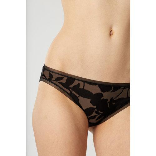 Venus Bikini Briefs
