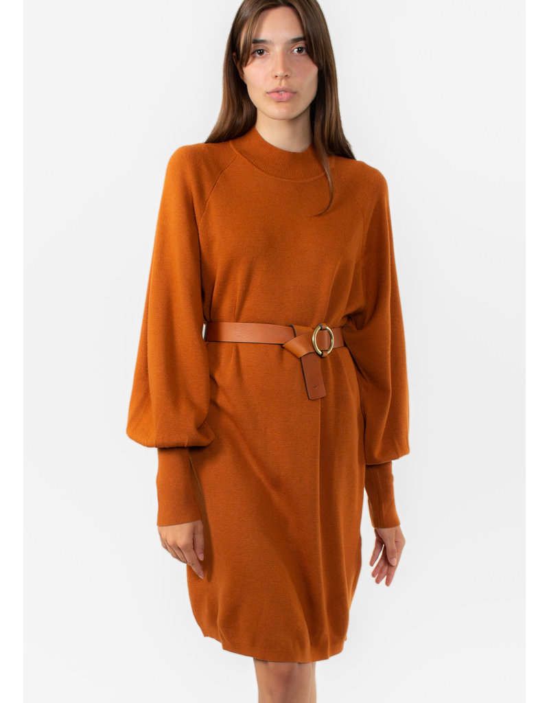 InWear Sanja dress brown