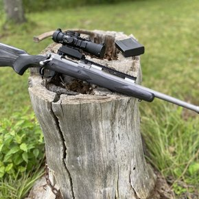 - Previously Enjoyed - Ruger Gunsight Scout Stainless .223 w/ Burris AR Optic