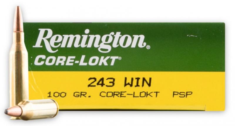 Remington Remington 243 100gr SP 20 per box