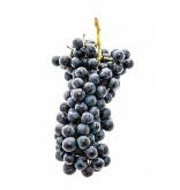 2018 Italian Brunello 6 Gal. Juice (Red)