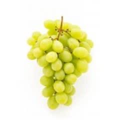 2019 Italian Pinot Bianco 6 Gal. Juice (White)