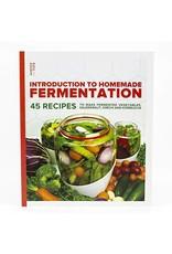 Introduction to Homemade Fermentation - Mortier Pilon