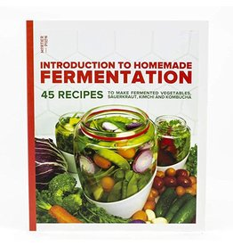 Introduction to Homemade Fermentation - Mortier Pilon
