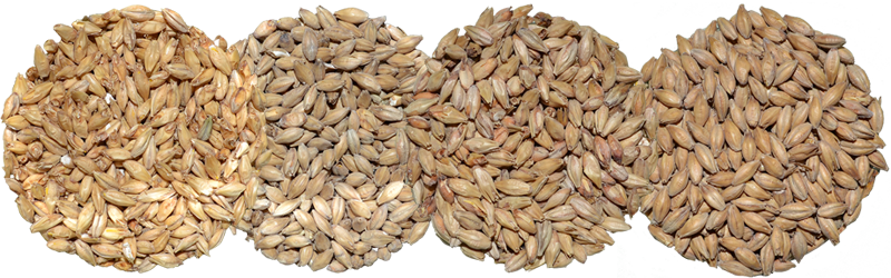 Base Malt! What's The Difference?