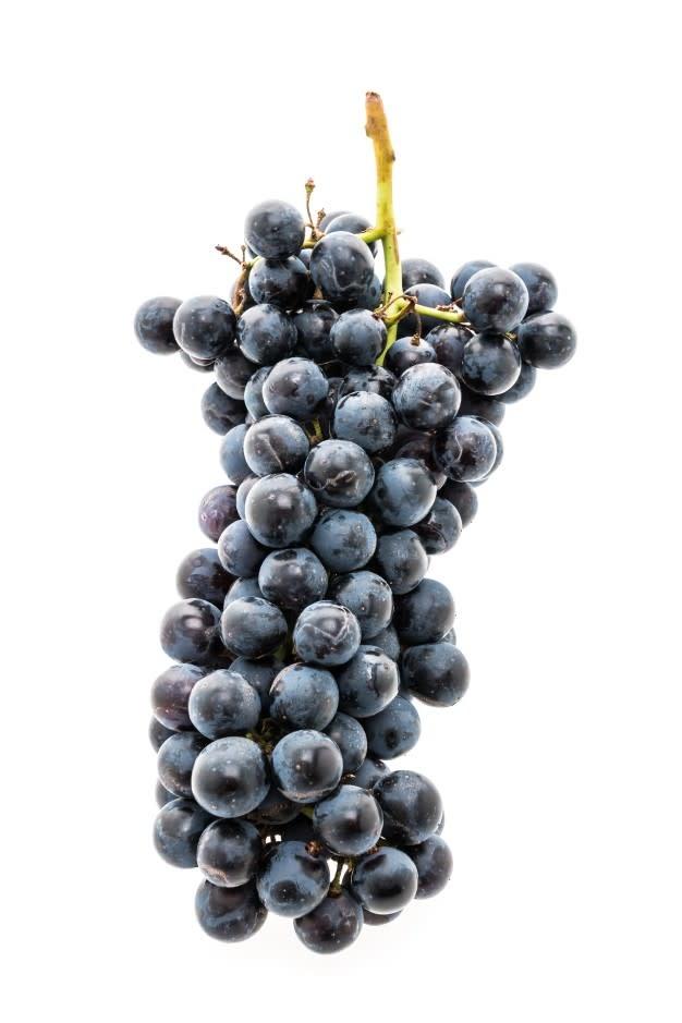 2019 Regina California Cabernet Franc 6 Gal. Juice (Red)