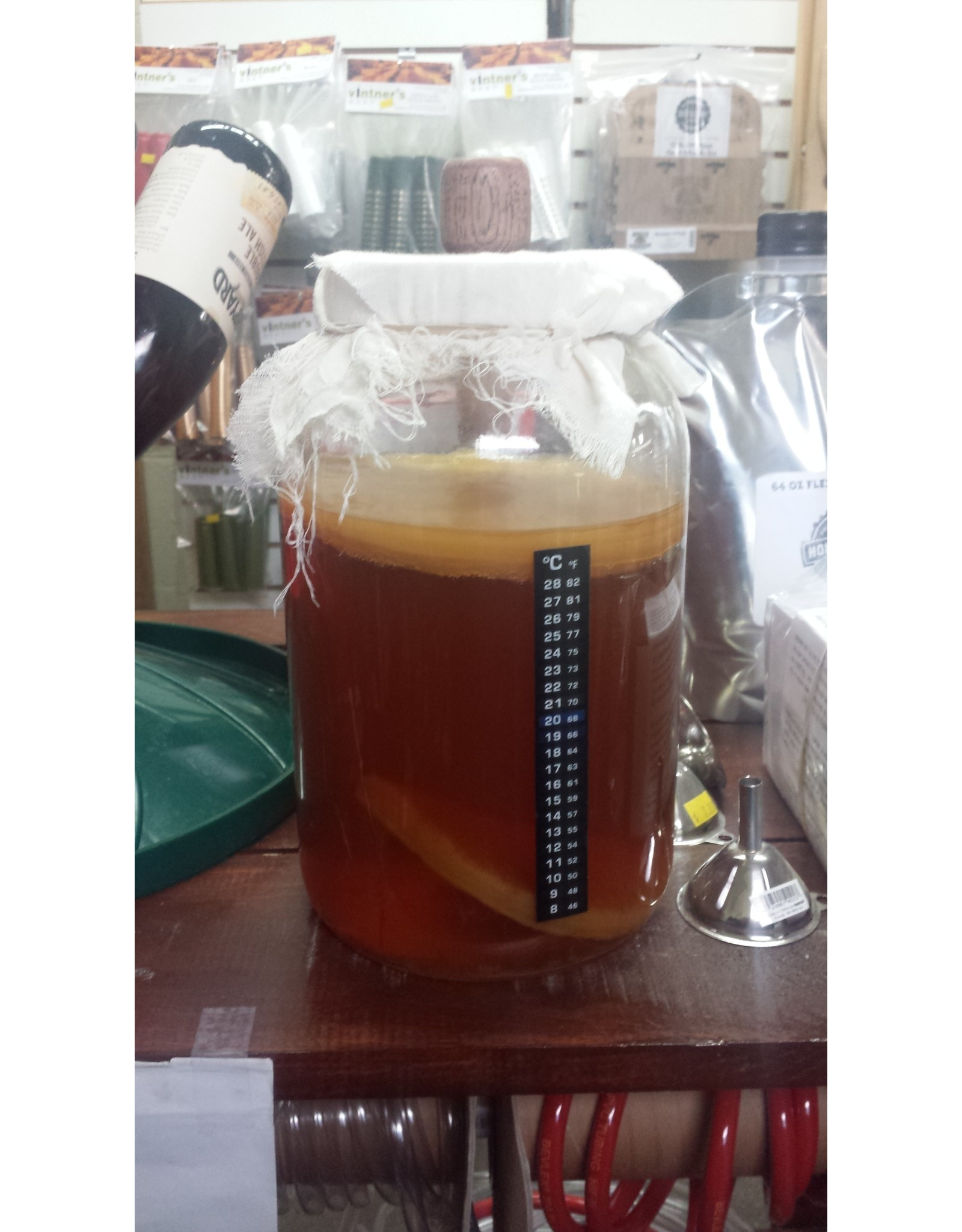 Philly Homebrew Outlet Kombucha One Gallon Kit W/SCOBY kk