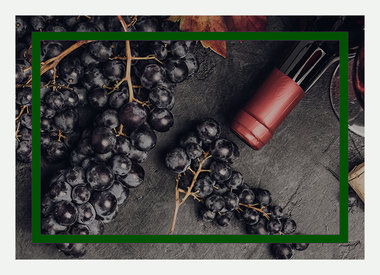 Wine Kits