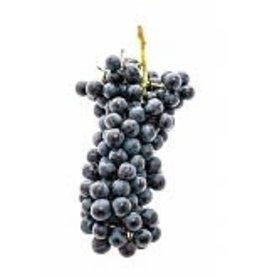 Italian Montepulciano 6 Gal. Juice (Red)