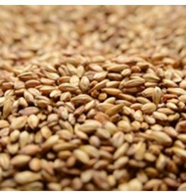 BRIESS 2-ROW CARAMEL 10L MALT 10 LB