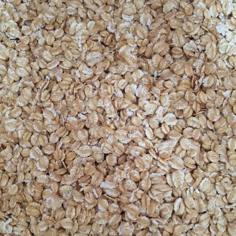 Flaked White Wheat 50 lb
