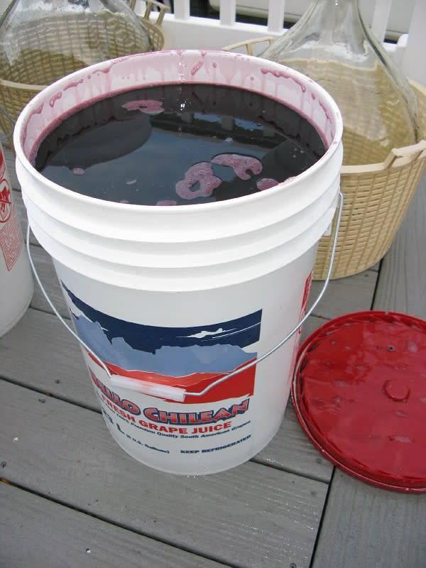 2019 Chilean Merlot 6 Gal. Juice (Red)