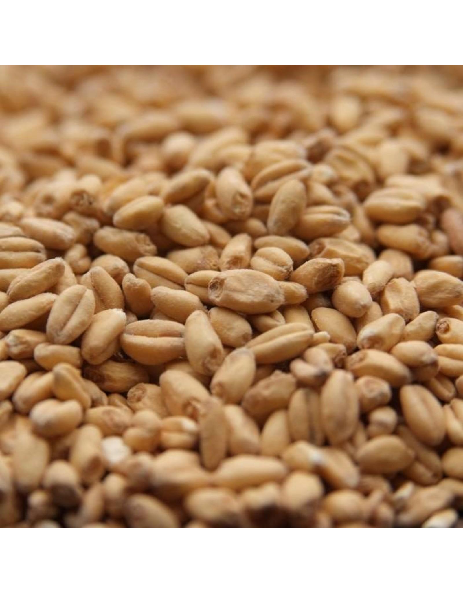 Rahr White Wheat 50 lb (25 kg)