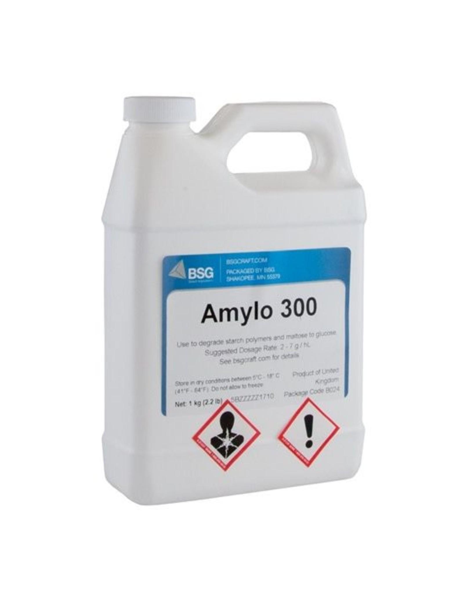 Amylo 300 1 kg