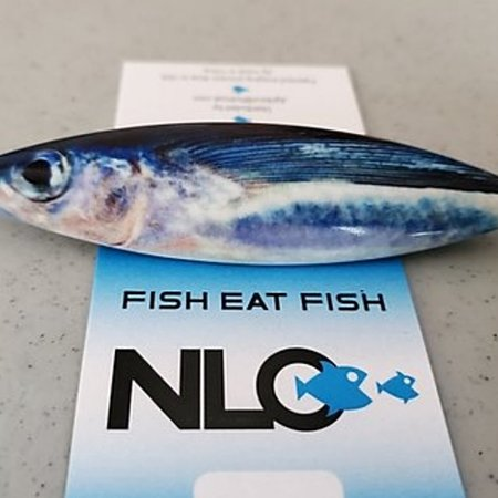 NLO Fishing Scoop Jig