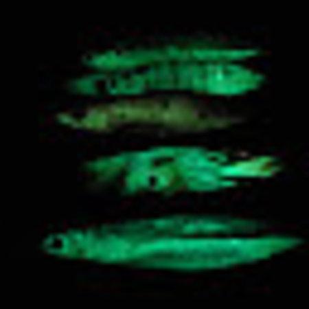 NLO Fishing Glow Scoop Jig
