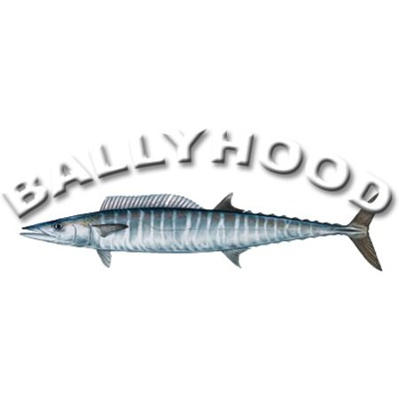 "Ballyhood ""Top Gun"""