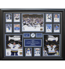 ST. LOUIS BLUES 2019 STANLEY CUP CHAMPIONS 22X28 FRAME
