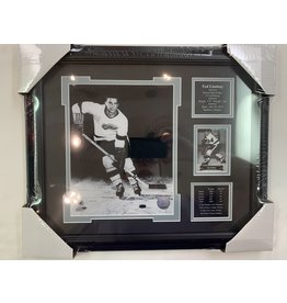 TED LINDSAY 13X16 FRAME - DETROIT RED WINGS