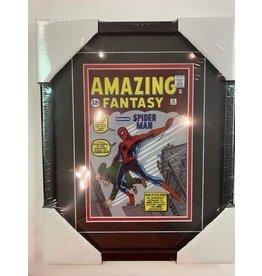 FANTASY SPIDER-MAN - 11X14 FRAME
