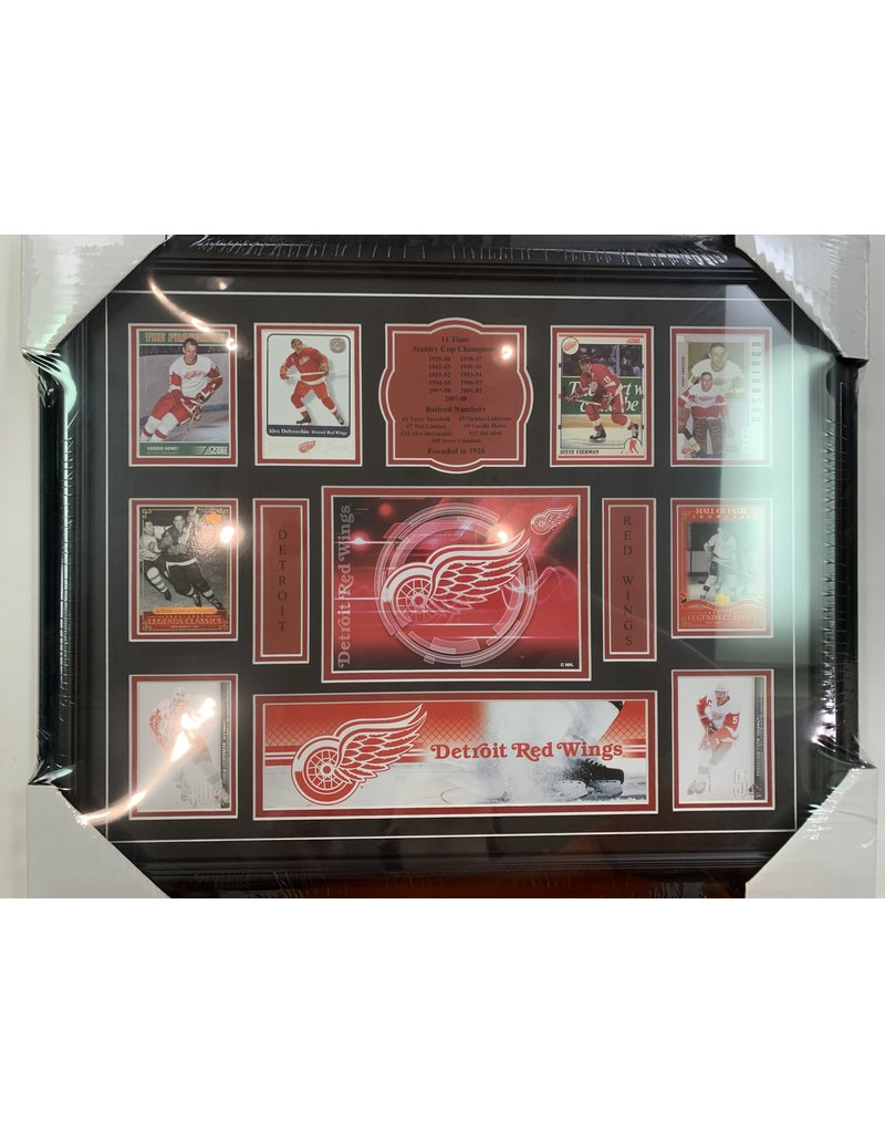 TEAM HISTORY - DETROIT RED WINGS 16X20 FRAME