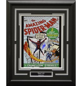 STAN LEE SPIDERMAN - AMAZING SPIDERMAN AUTOGRAPH 16X20 FRAME