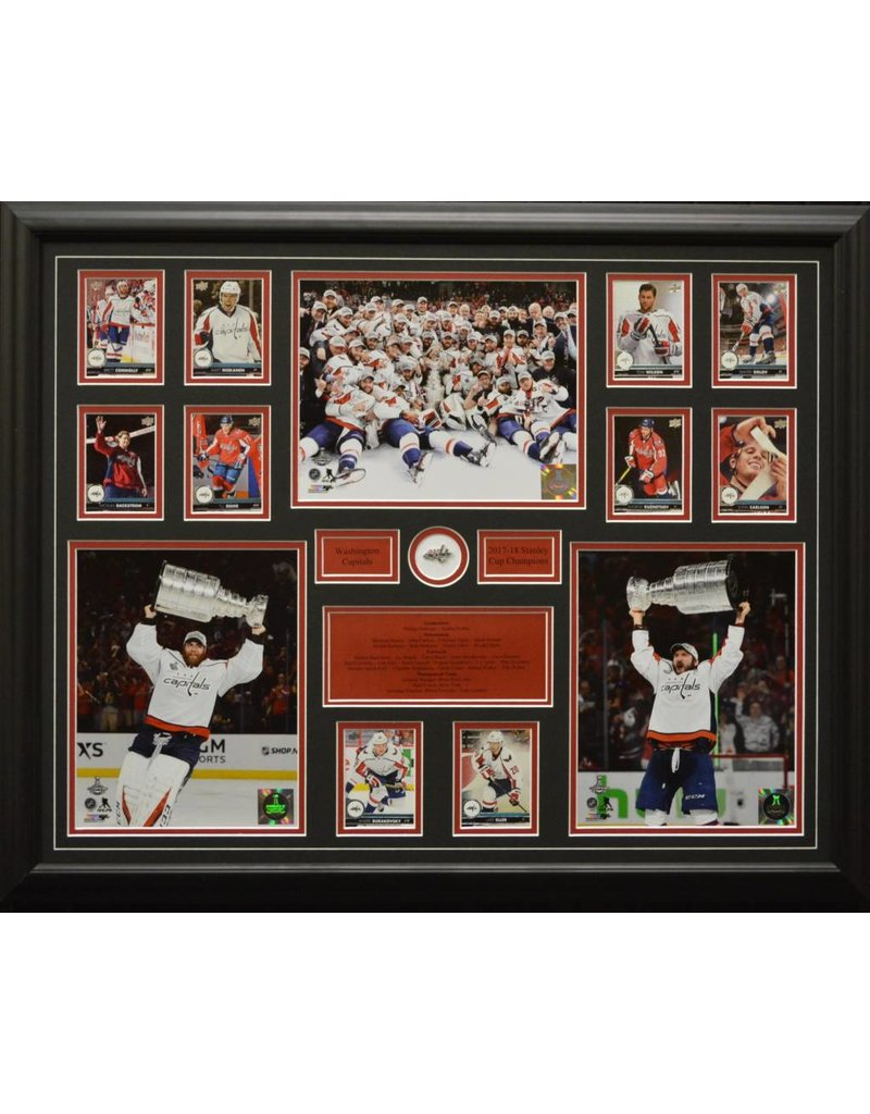 WASHINGTON CAPITALS 2018 STANLEY CUP CHAMPIONS 22X28 FRAME