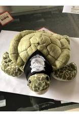 Pebbles The Sea Turtle