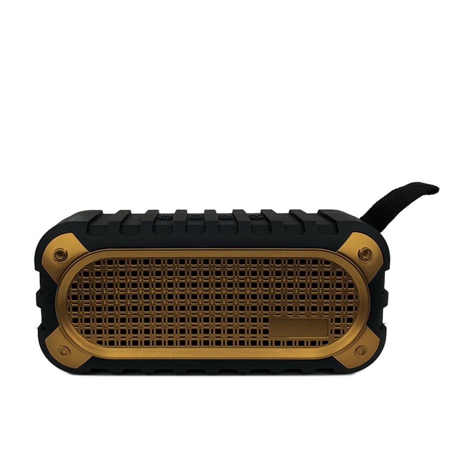 RGK-213 Bluetooth Speaker