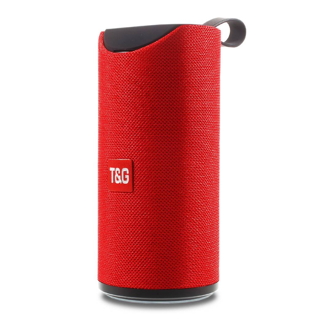 T&G Portable Wireless Bluetooth Speaker With Handle TG113