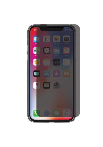 Privacy Matte Tempered Glass for iPhone 11 Pro / XS / X