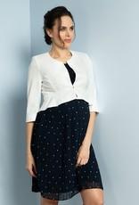 Seraphine Kimmy Pleated Maternity & Nursing Dress