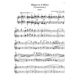 "Alfred Music Allegro in A Minor, Opus 144 (""Lebensstürme"")"