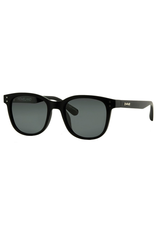 CARVE SUNGLASSES HOMELAND POLARIZED GREY LENS