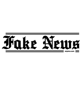 ENJOI FAKE NEWS STICKER