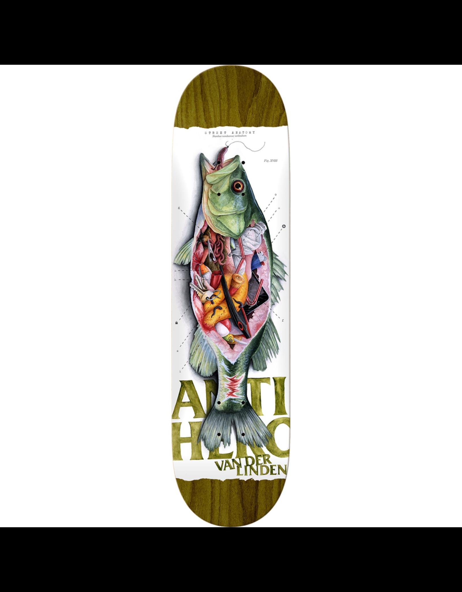 """ANTI HERO Anti Hero Skateboards Daan Van Der Linden Street Anatomy 8.25"""" Deck"""