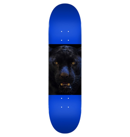 MINI LOGO MINI LOGO Deck 242/K-20-8.0 Animal Panther Eyes Navy