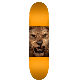 MINI LOGO MINI LOGO DECK 243/K-20 8.25 ANIMAL LION EYES ORANGE