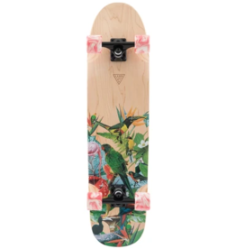 LAND YACHTZ ANDYACHTZ RALLY CAT PARADISE COMPLETE CRUISER