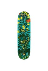 ALL I NEED THRIVE DECK-8.1