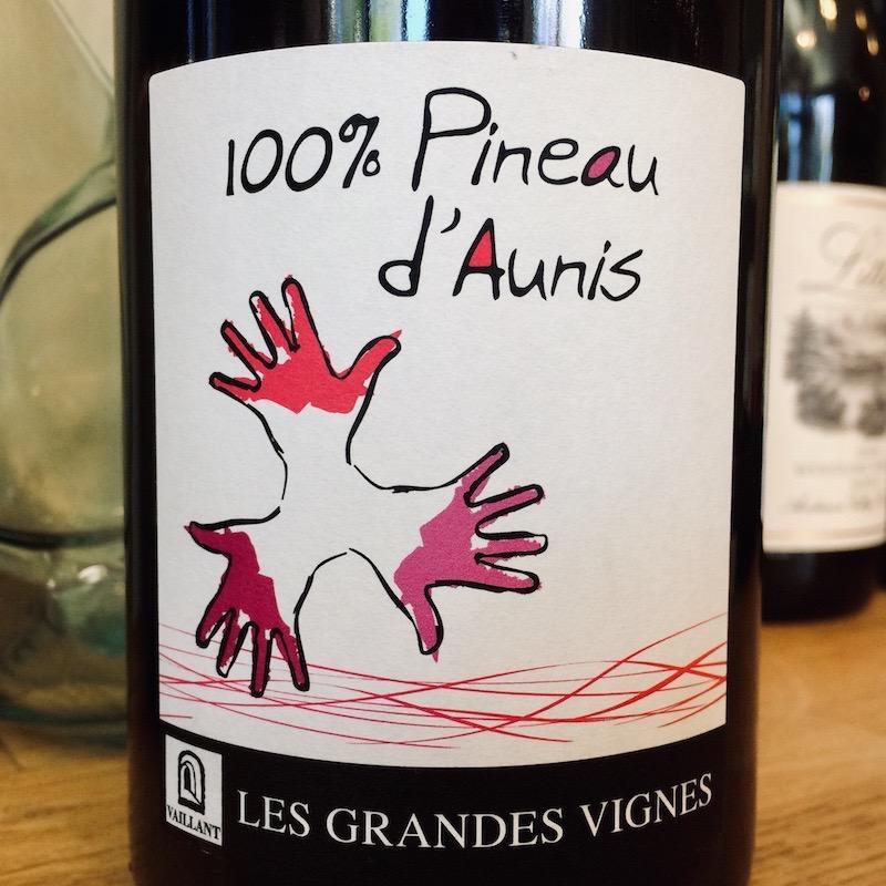 """2018 Les Grandes Vignes """"100% Pineau d'Aunis"""""""
