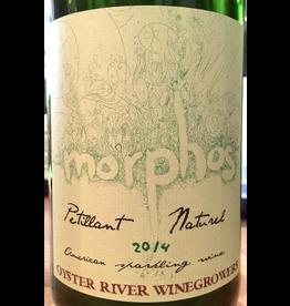 2019 Oyster River Morphos
