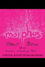 USA 2019 Oyster River Morphos Rose