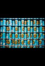 USA Zero Gravity Conehead IPA 12pk 12 ounce cans
